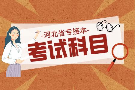 河北专接本汉语国际教育/汉语言文学考试科目
